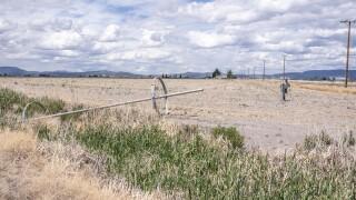 Western Drought Farmers vs Fish