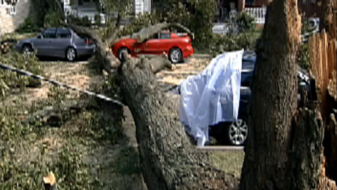 Vault: Hurricane hit Cincy with knockout punch