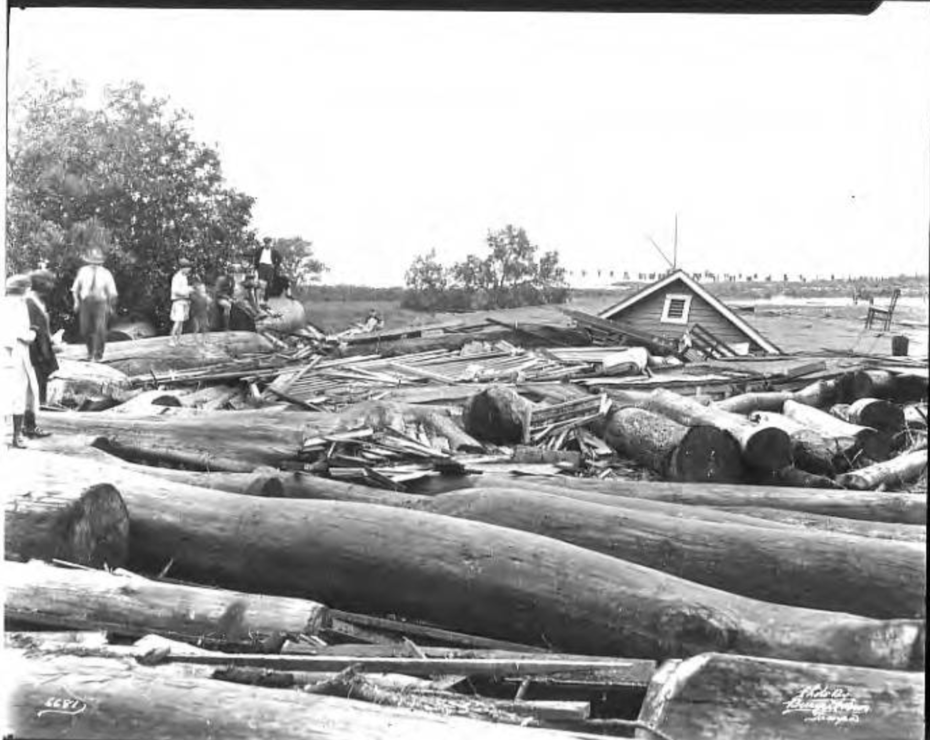 View of Palmetto Beach after hurricane.png