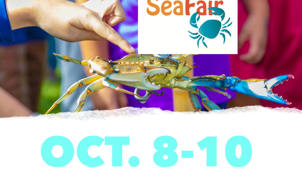 Rockport-Fulton SeaFair begins Friday