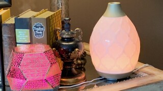 Essential oil diffusers might be toxic to your pet, veterinarian warns