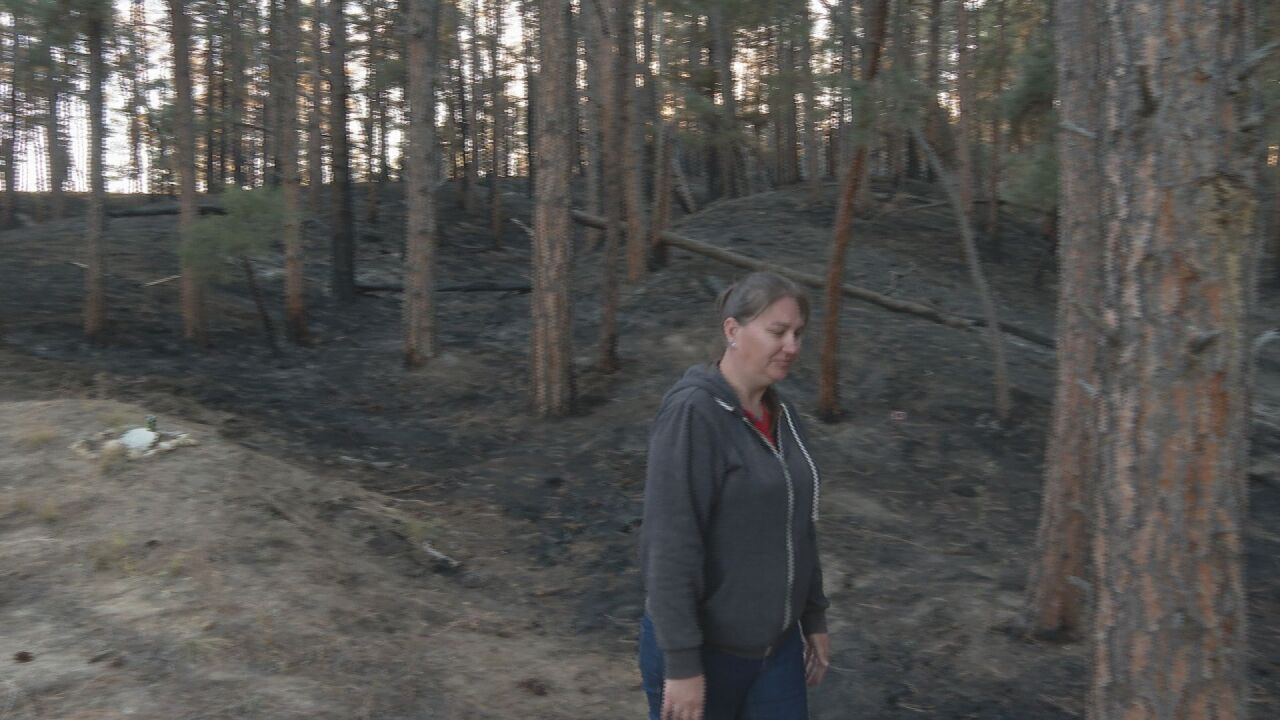 Burns from Birdseye Fire show how much was saved by large, quick response