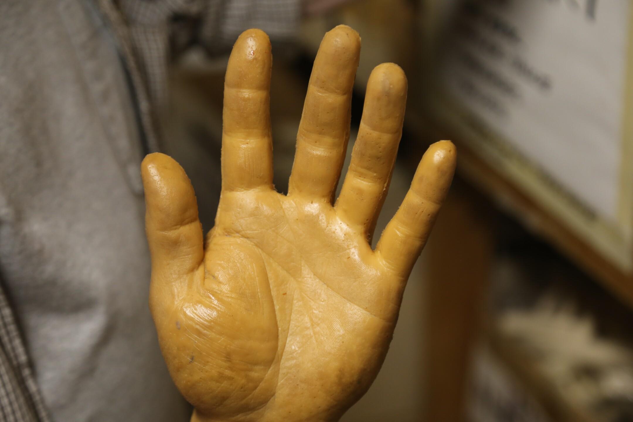 A hand.JPG