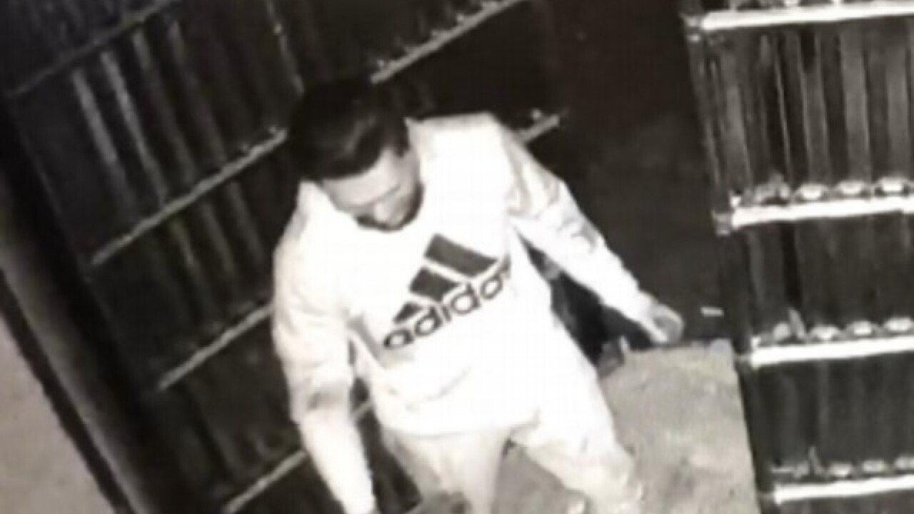 BPD looking for two business burglary suspects