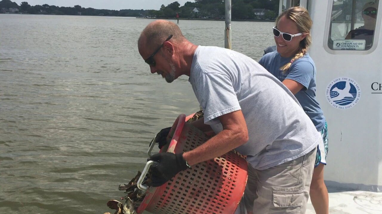 Volunteer works long hours to make sure local waters stay clean and healthy