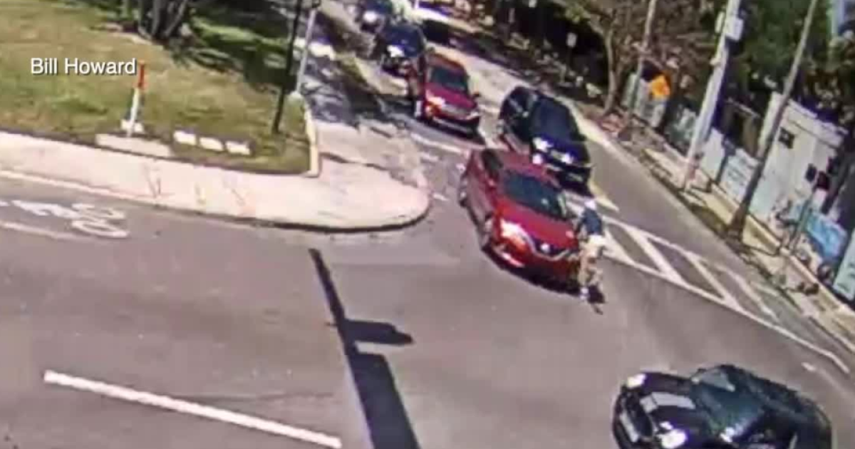 84-year-old hit while running on Bayshore Boulevard; TPD searching for driver