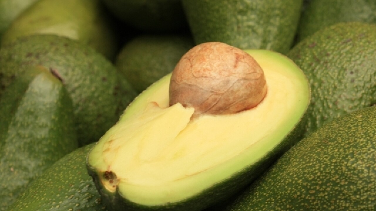 Avocado shortage triggers price surge