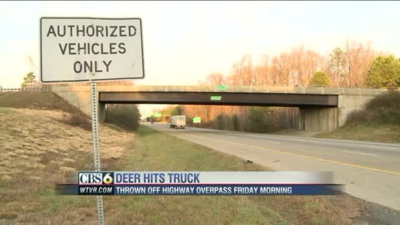 Deer tossed from I-295 overpass slams through big rig's windshield