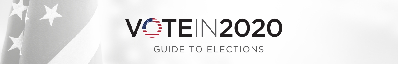 Election Guide 2020 - Banner