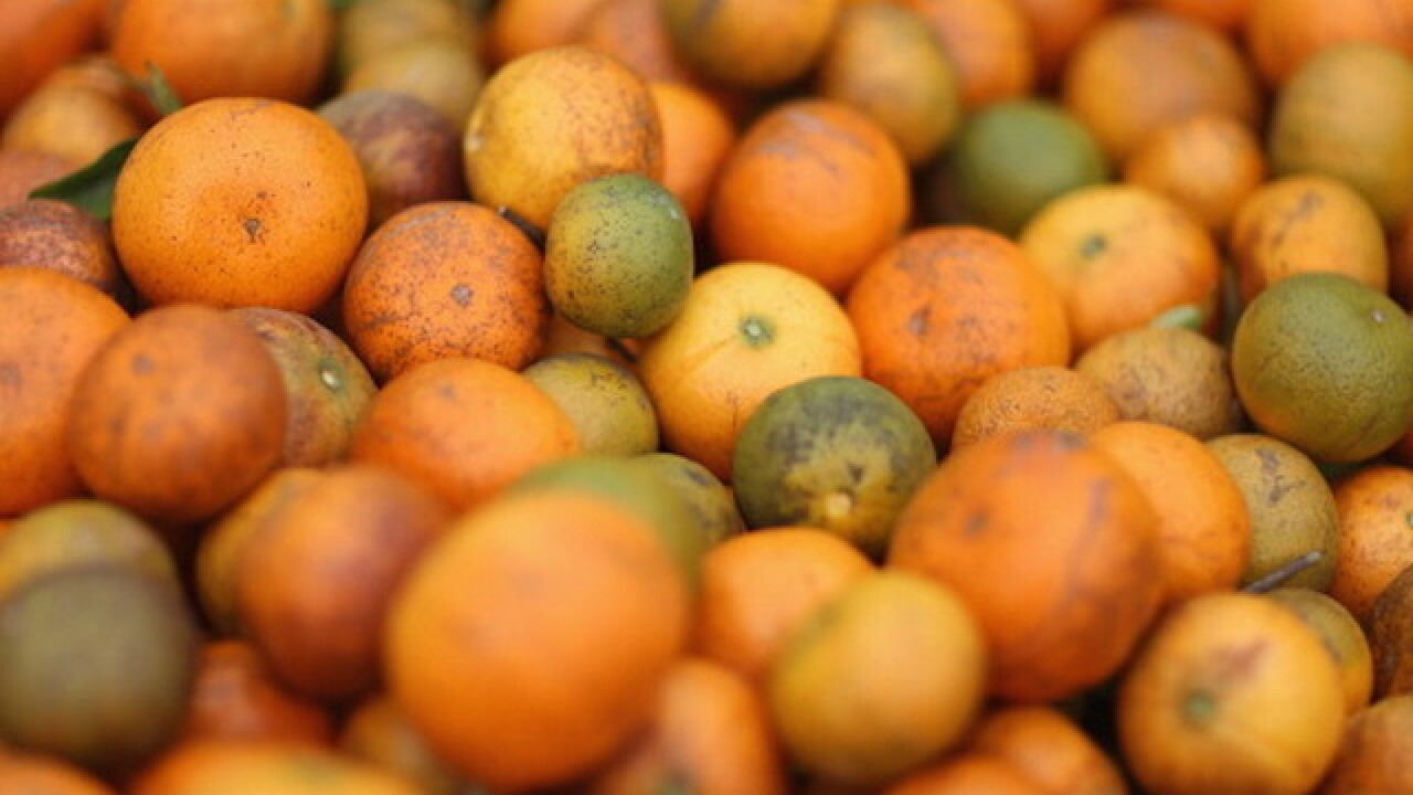 RECALL: Mandarin oranges sold at Walgreens