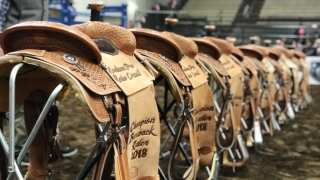 Champions crowned at 2019 Montana Pro Rodeo Circuit Finals