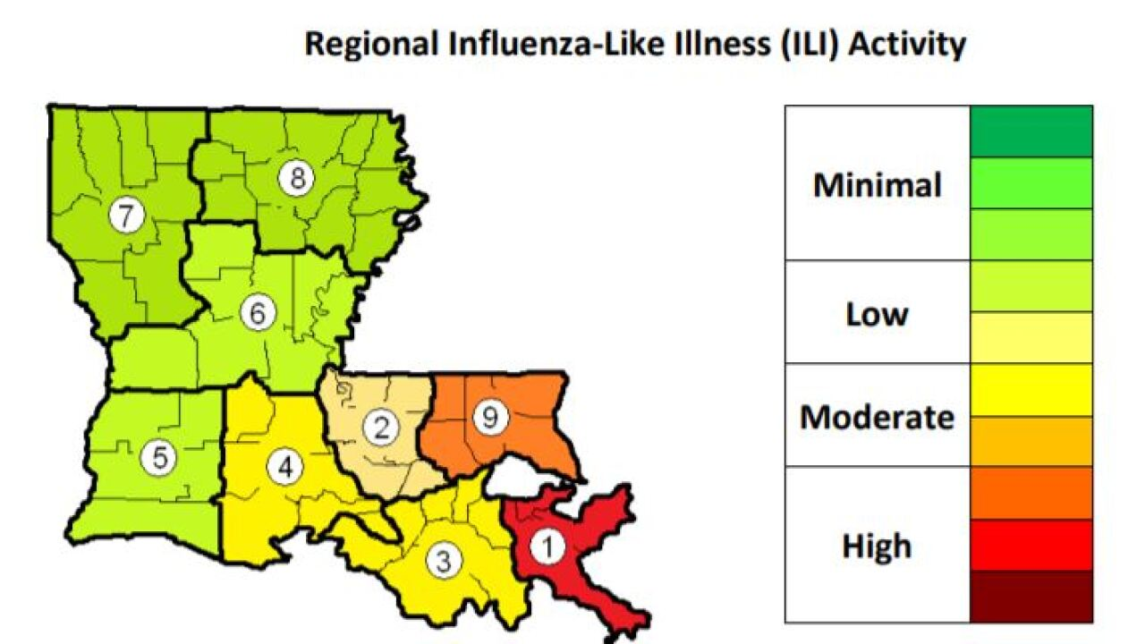 louisiana flu.JPG