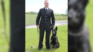 Police dog finds missing mother and toddler during his first shift on force