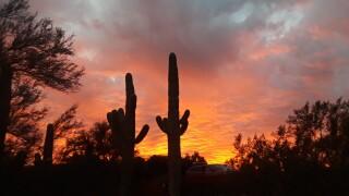 SUNSET by Richard Sierra.jpg