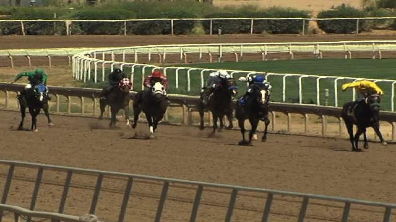 Horse virus promps quarantine at Turf Paradise