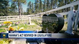 """Hanna's Act"" revived in Montana legislative committee"