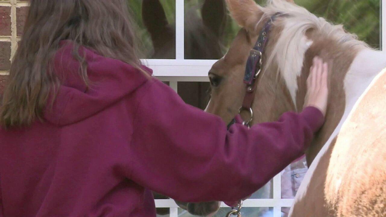 Horses visit CH nursing home (May 7) 2.jpeg