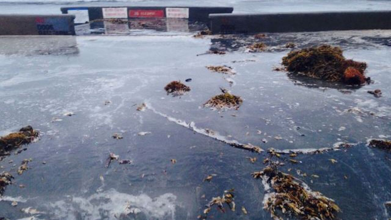 VIDEO: Monster tides flood La Jolla Shores