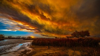 Man in Colorado donates photography proceeds to help wildfire victims