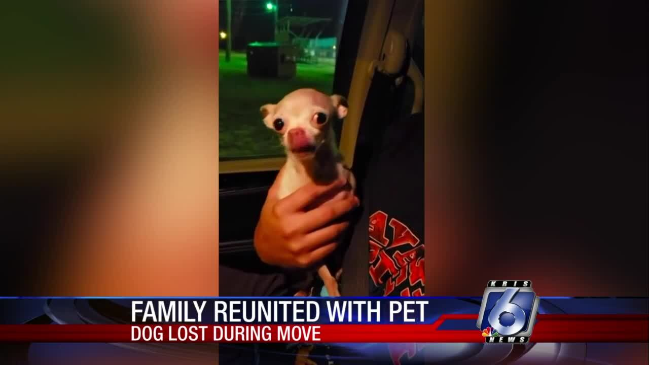 """Lost Dogs of Texas provided tips to help find """"Peaches"""""""