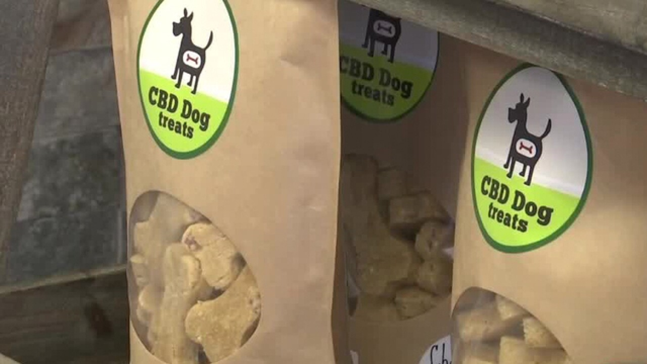 Anxiety relief for dogs? Stores now selling CBD oil treats