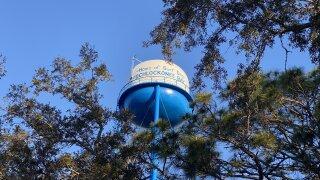 Ochlockonee Bay water tower of Surf Dog