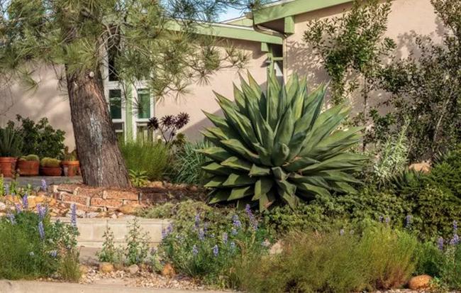 San Carlos rainwater storage home