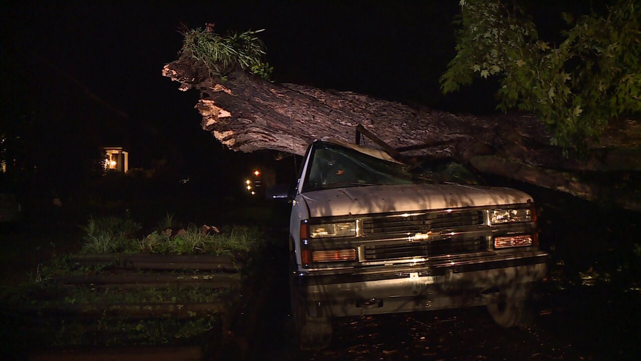 Trees crush cars inRichmond