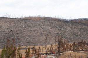 East Troublesome Fire burn scar, May 14, 2021