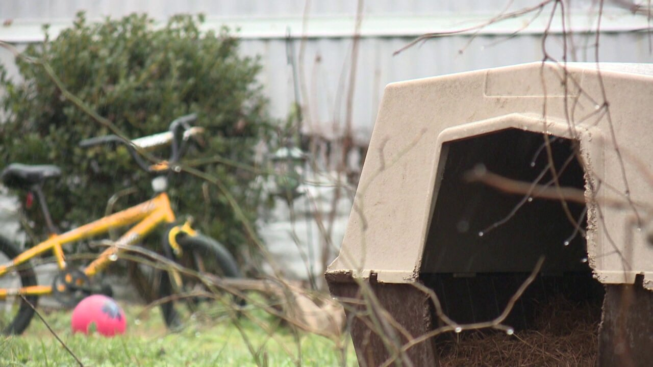 Woman faces prison sentence for taking chained dog from mobilehome