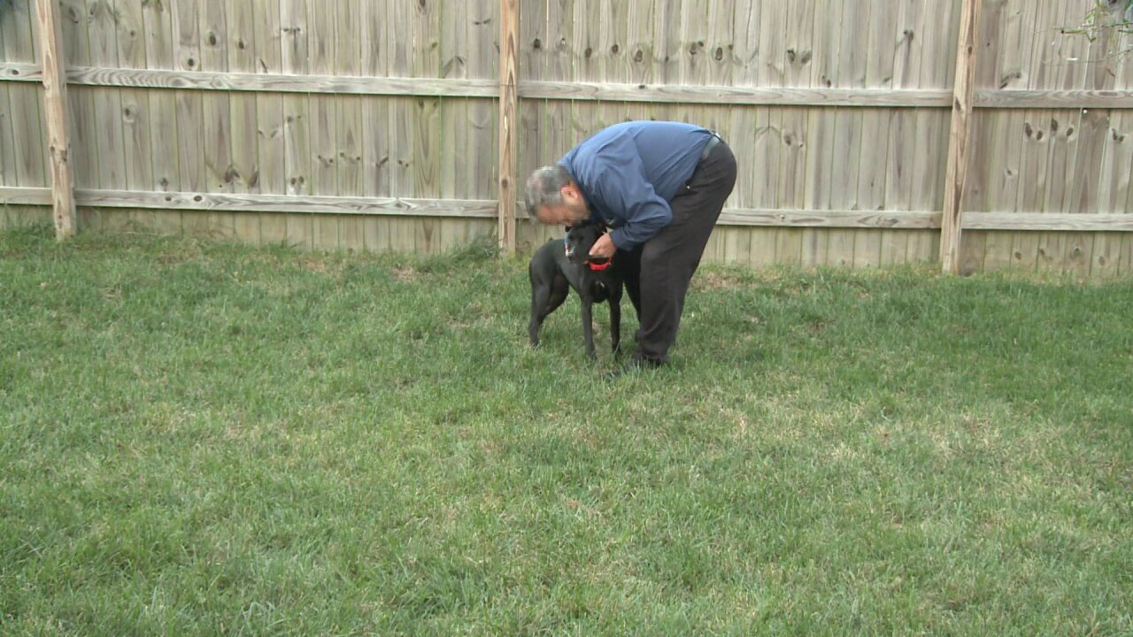Family dog saves the day after two people try to break into Virginia Beach home