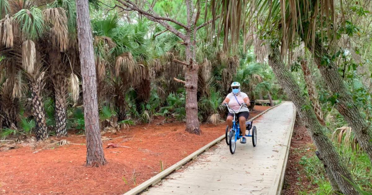 Walking Club: Exploring Clam Bayou Nature Preserve & Clam Bayou Nature Park