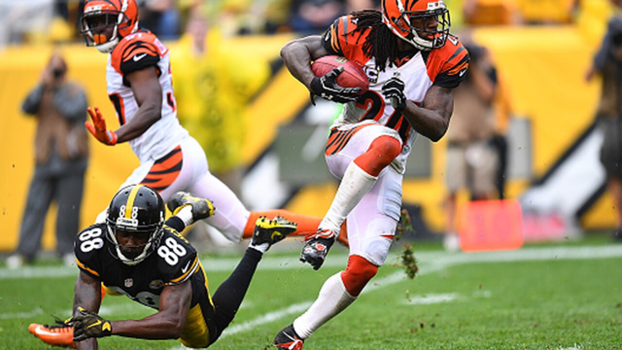 Fay: Bet on Bengals to win AFC North