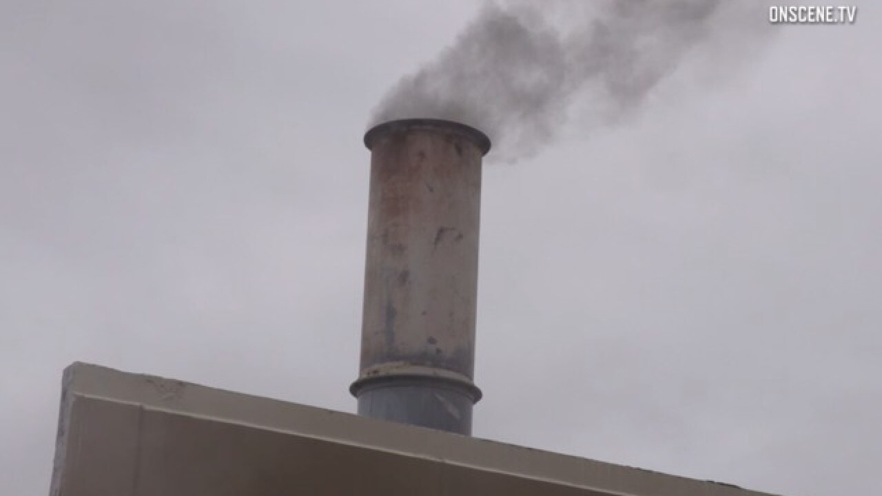 Crematorium owner denies human remains release
