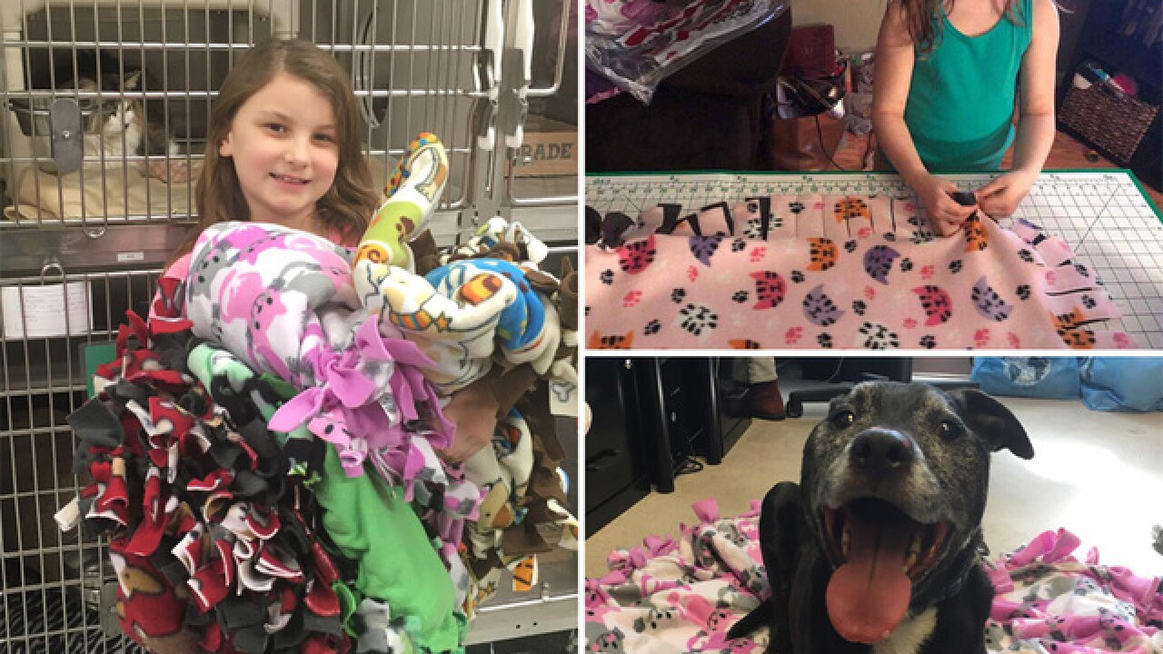 8-year-old creates blankets for homeless animals