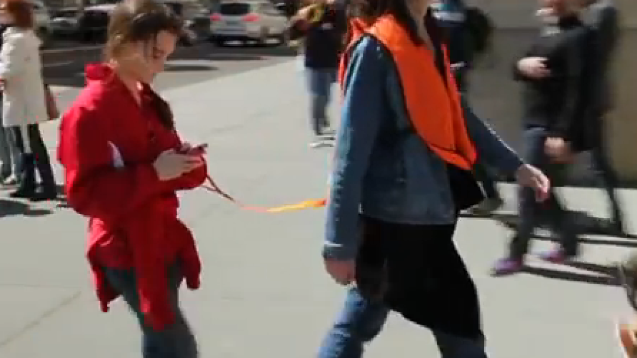 Viral Video: Seeing Eye People for Texting and Walking