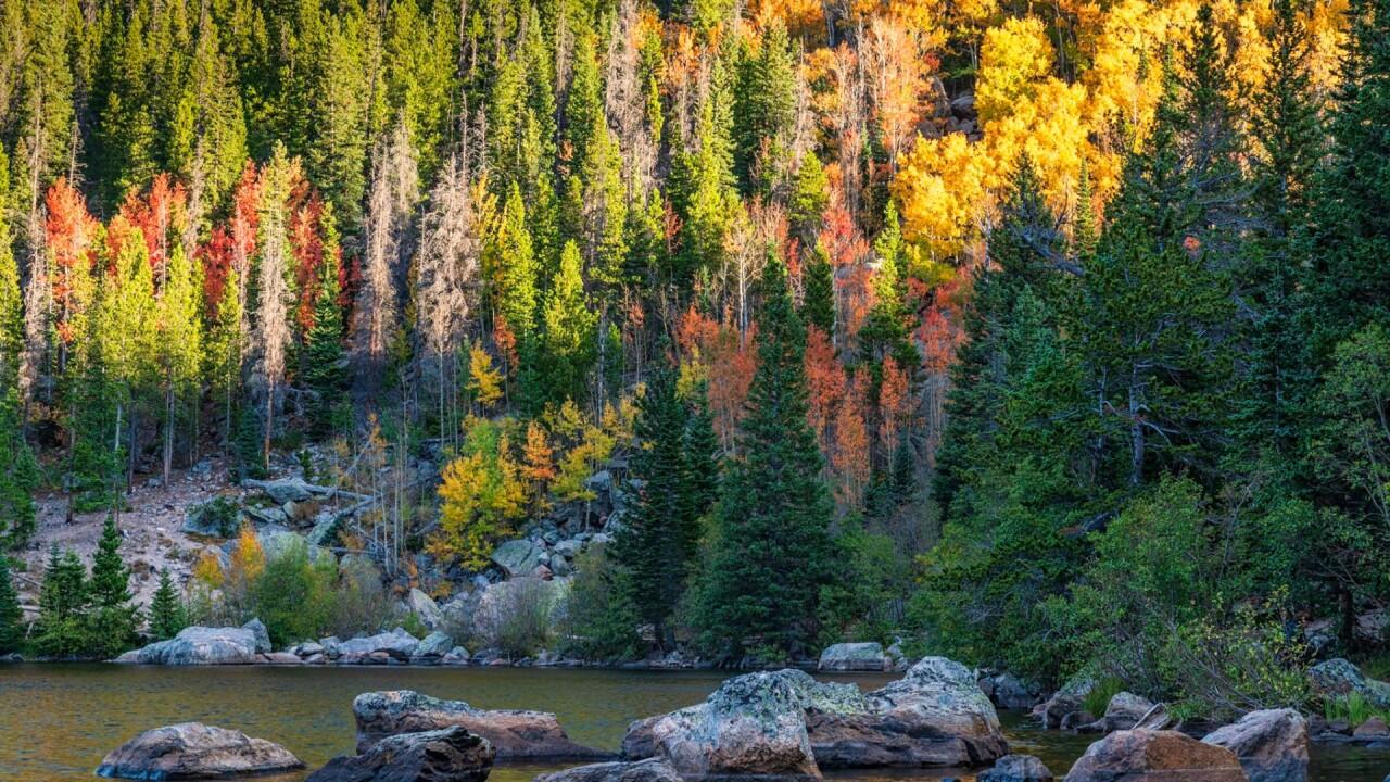 Rocky Mountain National Park Michael Ryno 1.jpg