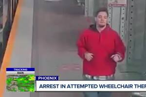 Police capture man who tried to steal woman's wheelchair on light rail.