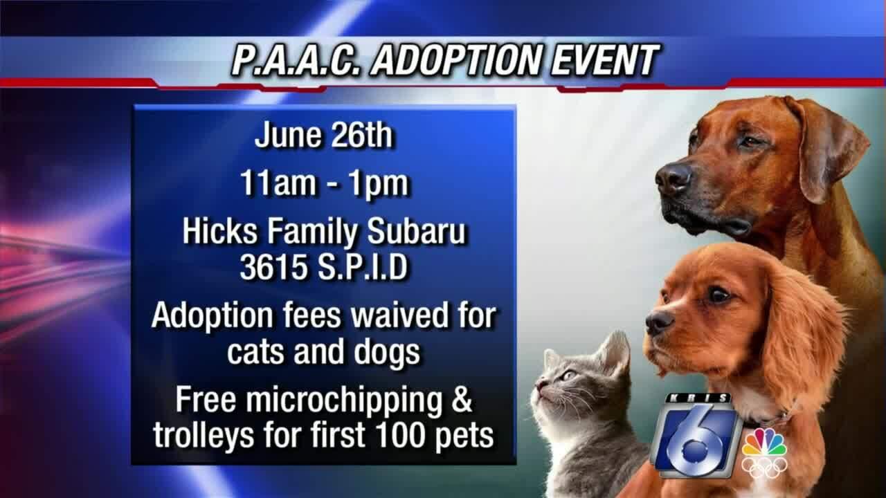 Free animal adoption event Saturday at Hicks Family Subaru
