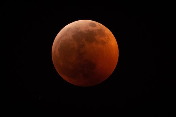 The super blood wolf moon as seen from Boynton Beach, FL on Jan. 20 2019.  Courtesy: Hrishikesh Nulkar