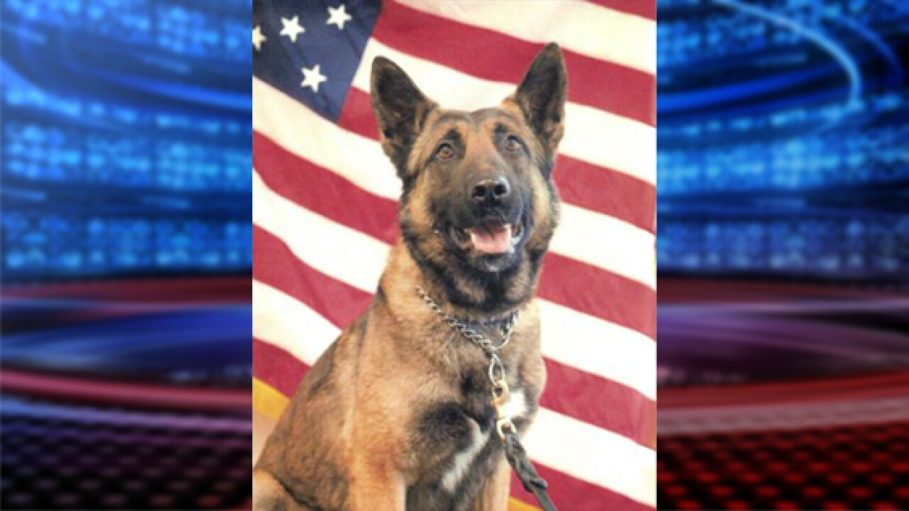 Cache County K-9 'Endy' dies in 'unfortunate incident'