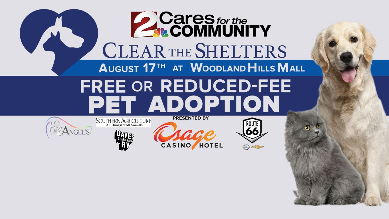 Clear the Shelter 2019