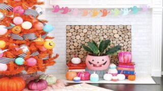 Buy Orange Trees To Decorate For Halloween