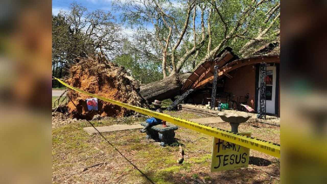 Grandmother killed after tree topples through home in small town ofVictoria