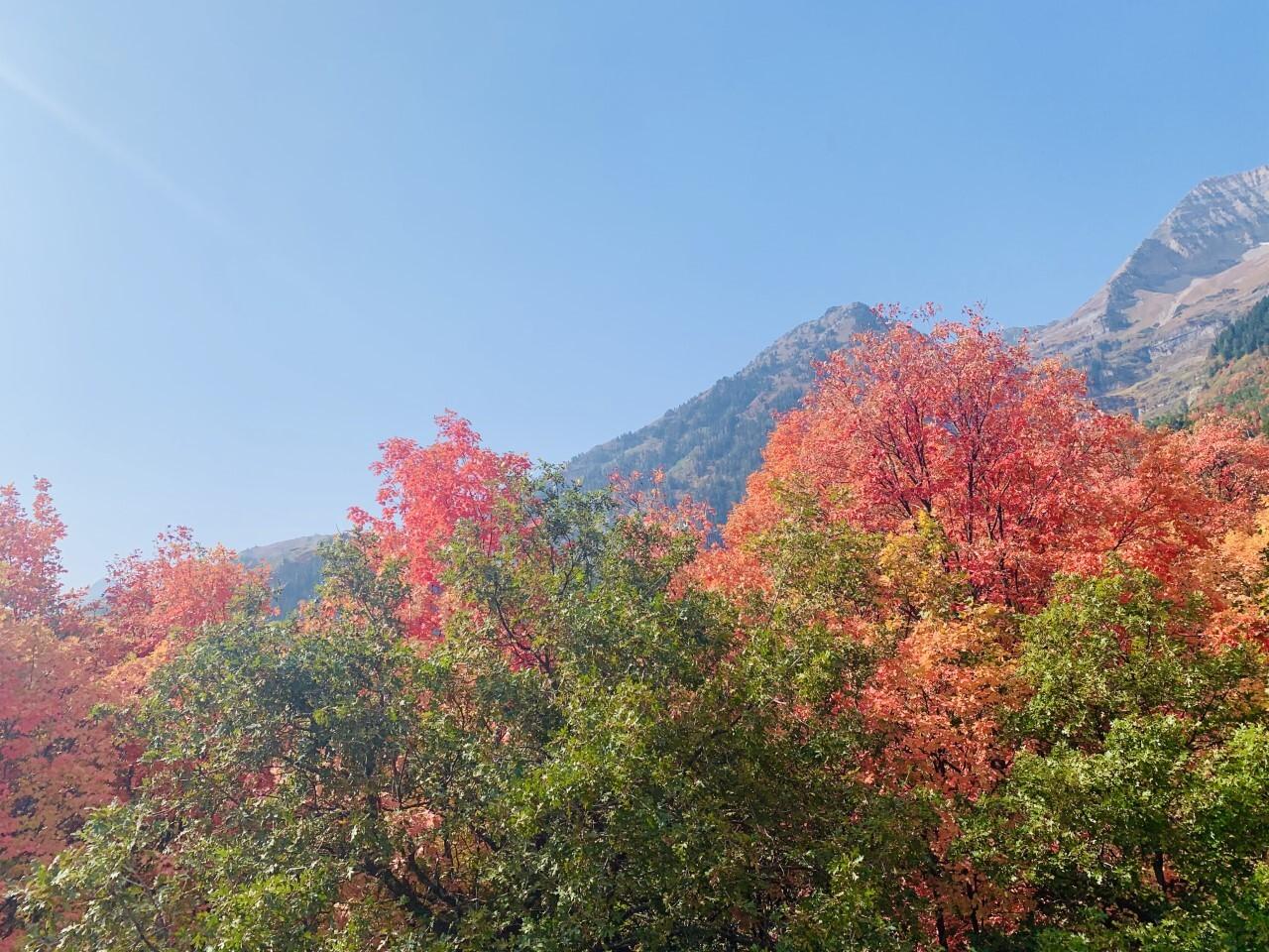 Megha Shivekar@ Alpine loop6.jpg