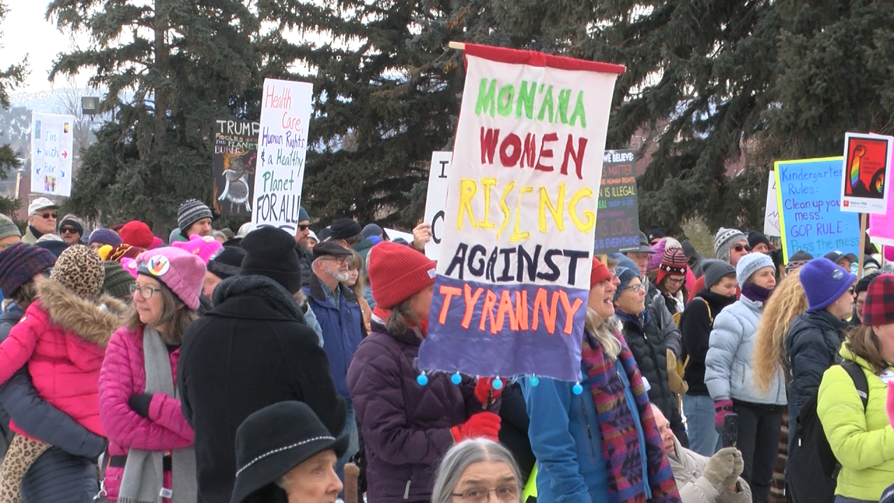 women's march.png