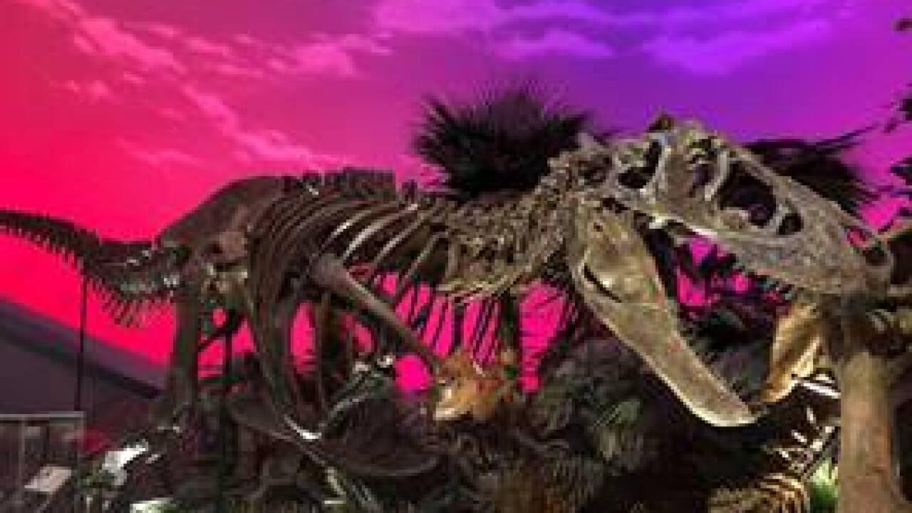 dinosue.jpg