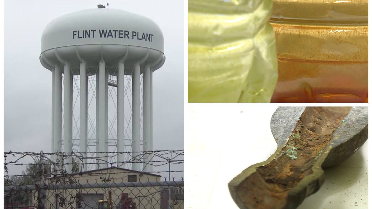 'We stood up' How a Flint mom and Virginia Tech blew the whistle on Flint water crisis