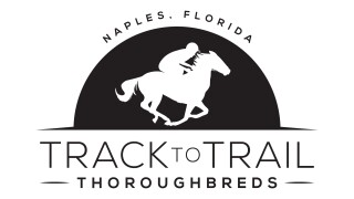 tracktotrail_logo_black.jpg