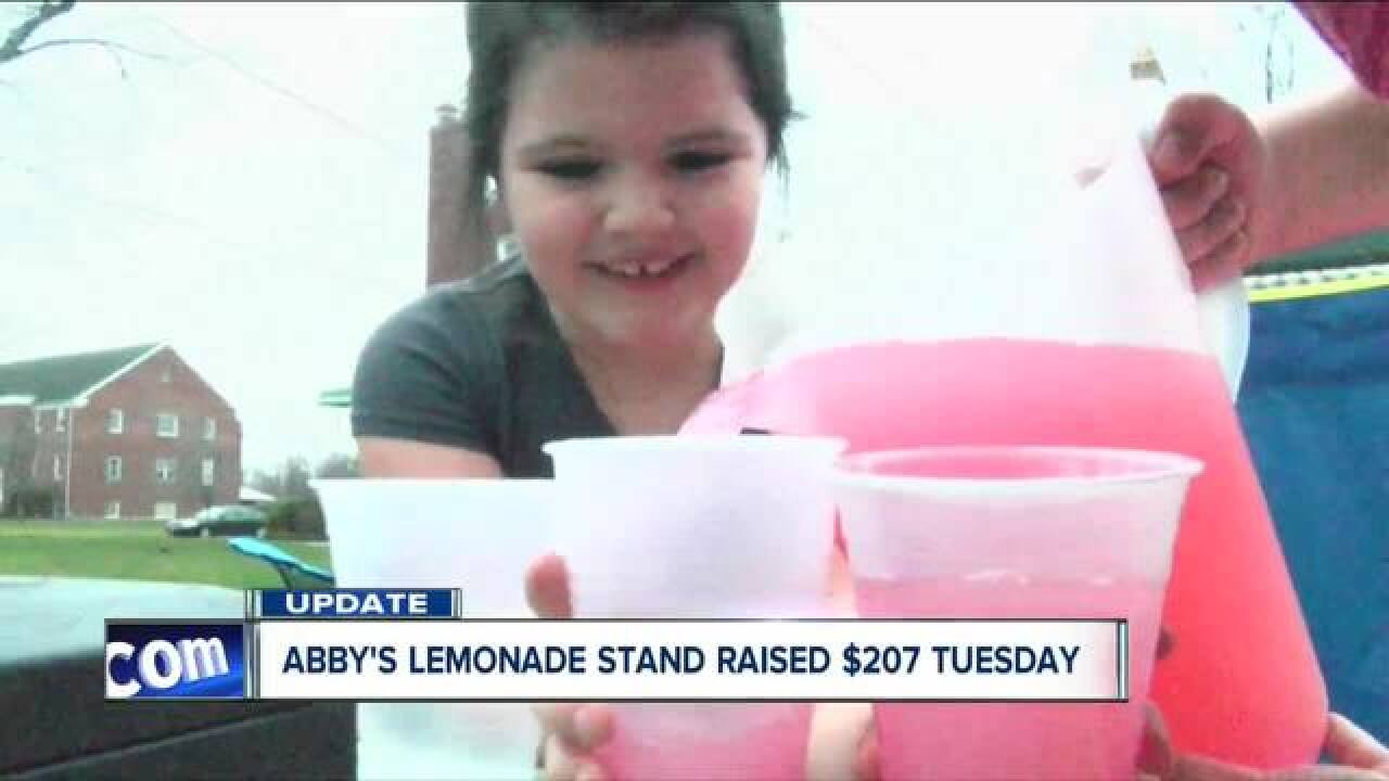 Cheektowaga girl turning lemons into lemonade